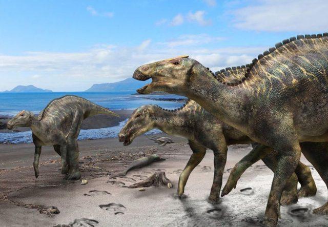 Названо общее заболевание человека и динозавра