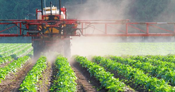 Как правильно применять гербициды