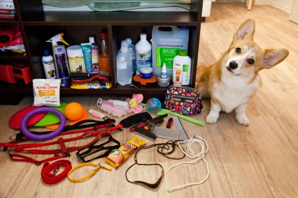 Различные товары для животных по доступным ценам